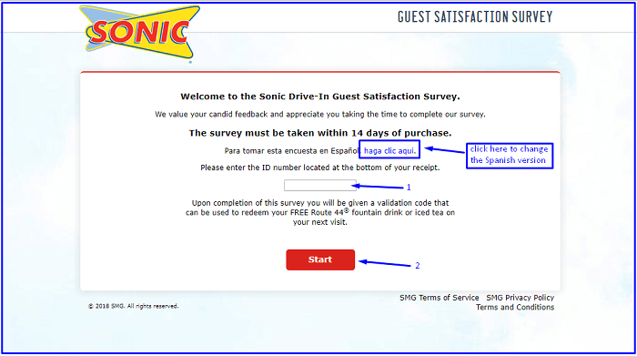 Sonic Survey form