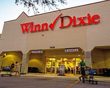 Winn-Dixie Survey