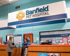 Banfield Pet Hospital Survey