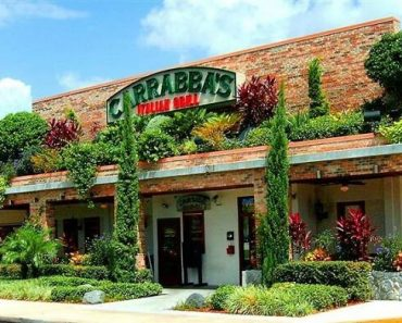 Carrabbas Survey