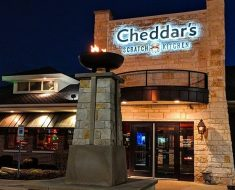 Cheddar's Survey
