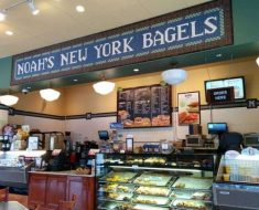 Noah's Bagels Survey