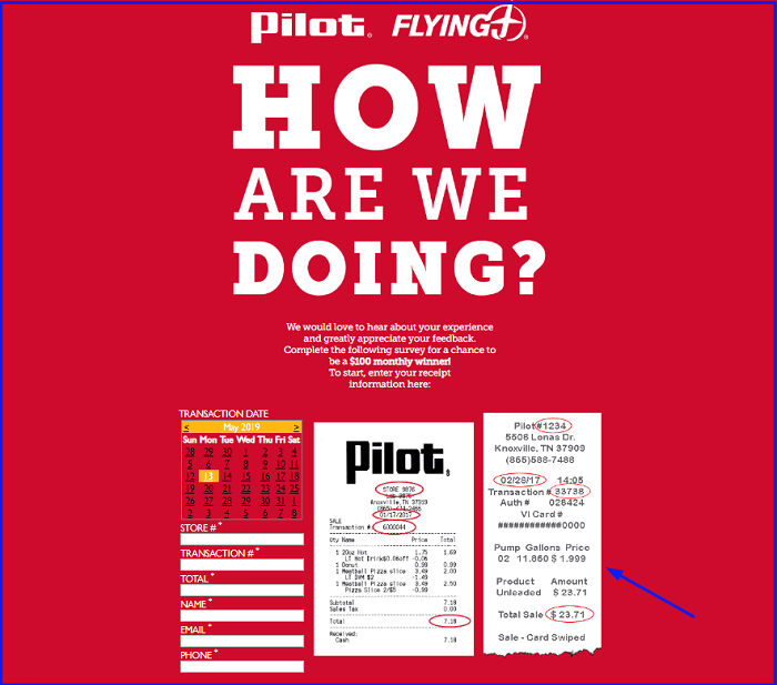 Pilot Flying J Survey form