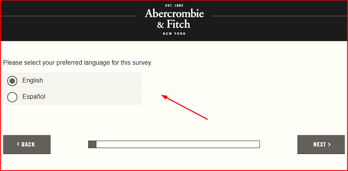 Abercrombie & Fitch Survey.form