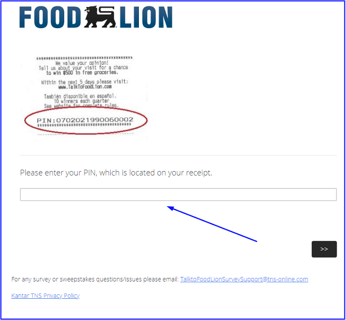 Food Lion Survey form