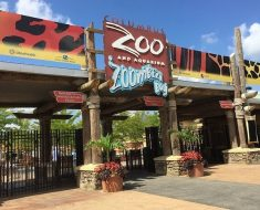 New York Zoos and Aquarium Survey